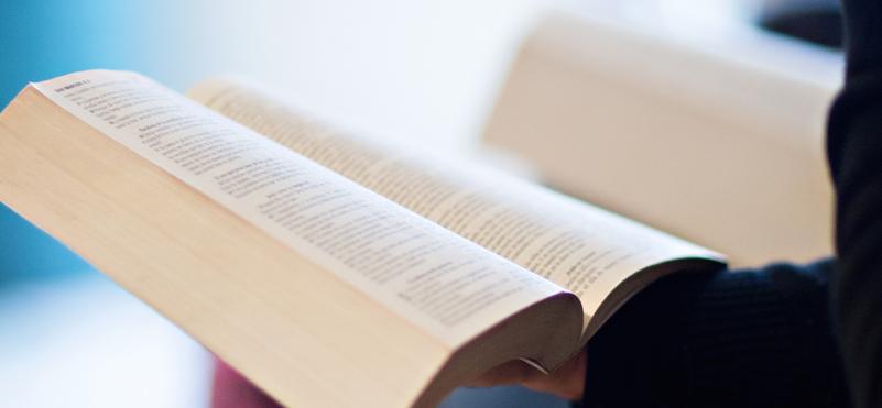 llibre web