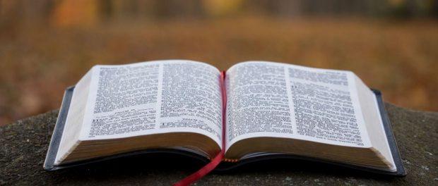 2- Què diu la Paraula de Déu?